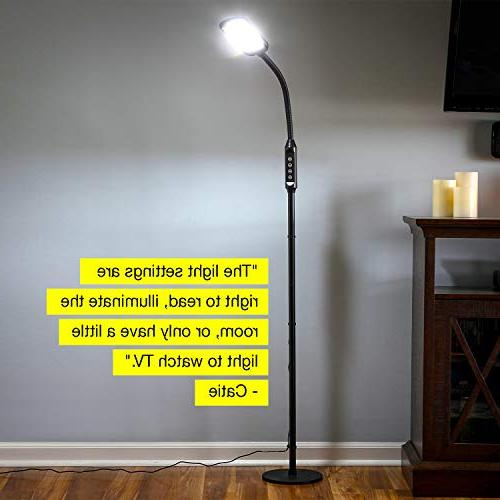 Brightech High Contrast, Bright for & - from Task Light to Bedroom, Bedside Table Book Lighting